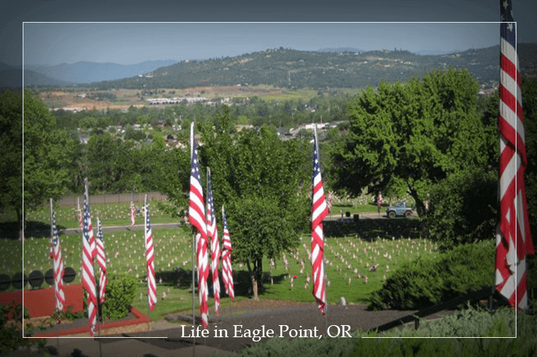 2016-11-day-in-the-life-cemetaery-flags